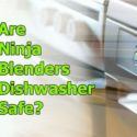 Ninja Blender with Dishwasher