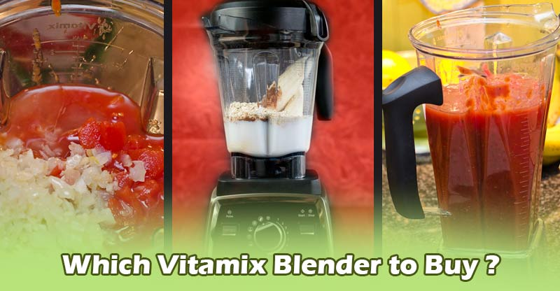 Which Vitamix blender to buy